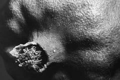 close-up van een Granaatappel   Royalty-vrije Stock Afbeeldingen