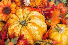Close-up van een kleurrijke de herfstvertoning met een pompoenfruit Stock Fotografie