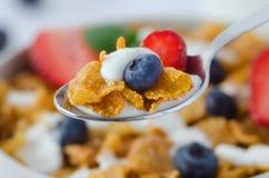 Close-up van een lepel met graangewassen en fruit Stock Foto