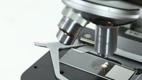 Close-up van een microscoop wordt geschoten die stock footage