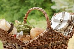 Close-up van een picknickmand met vers brood en groene tarwe Royalty-vrije Stock Afbeelding