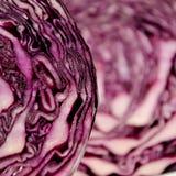 Close-up van een rode Kool Royalty-vrije Stock Foto's
