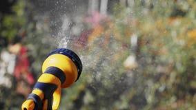 Close-up van een spuitbus van het tuinwater ter beschikking stock video