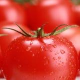 Close-up van een tomaat Royalty-vrije Stock Afbeeldingen