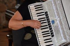 Close-up van een wijfje die op harmonika spelen stock afbeelding