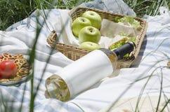 Close-up van fles witte wijn, sappige appelen, heerlijke snacks Picknickconcept Openlucht vrije tijd Witte wijn als zich het grot royalty-vrije stock foto's