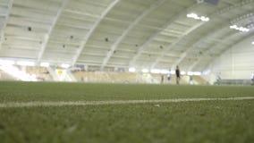 Close-up van gazon in stadion met de opleiding van atleten actie Binnenstadion met groen gras en spelers die binnen praktizeren stock videobeelden