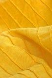 Close-up van geel organisch katoen Stock Afbeeldingen