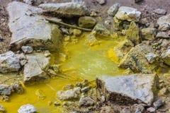 Close-up van gele zwavelachtige geiser Stock Afbeelding
