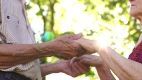 Close-up van gerimpelde handen twee oude mensen in het Park stock video