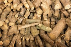 Close-up van gestapeld brandhout van olijfboom Conceptenvoorbereiding voor de winter, het verwarmen van het huis royalty-vrije stock foto's