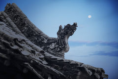 Close-up van gravures op het dak van de pagode, schemer, Shanxi-Provincie, China Royalty-vrije Stock Afbeelding