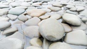 Close-up van grijze kiezelstenen die in rivier liggen Royalty-vrije Stock Fotografie