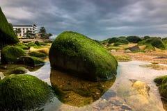 Close-up van Groen Moss Covered Rocks bij Strand met Donkere, Dramatische Hemel tijdens een Onweer stock foto's