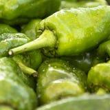 Close-up van groene paprika's Stock Afbeeldingen