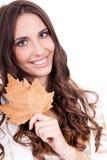 Close-up van het blad van de vrouwenholding Stock Afbeeldingen