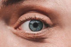 Close-up van het blauwe oog Royalty-vrije Stock Foto's