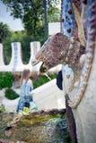Close-up van het draak` s hoofd op de draak` s trap bij de ingang van het Guell-park door de Spaanse architect Gaudi royalty-vrije stock foto
