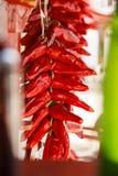 De Close-up van de peper royalty-vrije stock foto