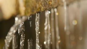 Close-up van het druipende water, in het zonlicht stock videobeelden
