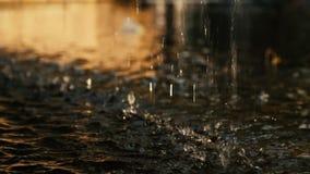 Close-up van het druipende water, in het zonlicht stock video
