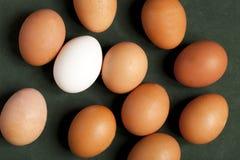 Close-up van het eiwit, bruine en witte ei van kippeneieren op groene achtergrond stock fotografie