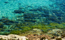 Close-up van het overzeese water van Kreta Stock Fotografie