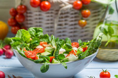 Close-up van het voorbereiden van een gezonde de lentesalade royalty-vrije stock fotografie