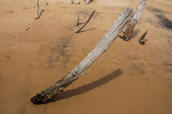 Close-up van houten stomp die in het zand op bewolkte dag in Paraty Mirim wordt begraven royalty-vrije stock afbeelding
