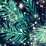 Close-up van Kerstboomachtergrond met dalende sneeuw Vrolijke Kerstmis Stock Afbeeldingen
