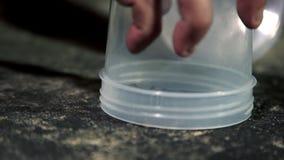 Close-up van kleine spin die onder container worden gevangen stock footage