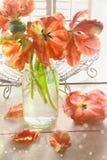 Close-up van kleurrijke tulpen dichtbij venster Royalty-vrije Stock Afbeeldingen