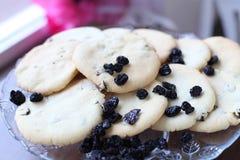 Close-up van koekjes met rozijnen Royalty-vrije Stock Foto's