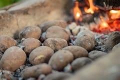 Close-up van koperslagerssteenkool en aardappelen in de schil Stock Afbeelding