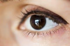 Close-up van menselijke oog bruine, macrowijze Stock Foto