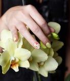 Close-up van mooie geschilderde spijkers op een bloem Stock Fotografie