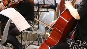 Close-up van musicivrouwen die klassieke muziek op cello spelen stock footage