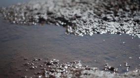 Close-up van nat land na een droogte en enkel een verledenregen Woestijn stock footage