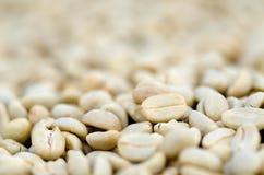 Close-up van niet geroosterde koffiebonen Stock Afbeeldingen