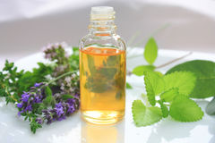 Olie en kruiden Stock Fotografie