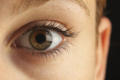 Close-up van oog Stock Foto