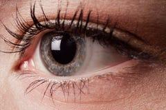 Close-up van oog Royalty-vrije Stock Foto