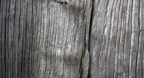 Close-up van oude eiken raad royalty-vrije stock foto's