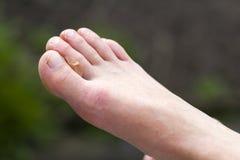 Close-up van paar van woman& x27; s schone witte droge voeten met u Royalty-vrije Stock Foto's
