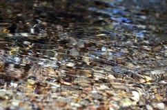 Close-up van rivier royalty-vrije stock afbeelding