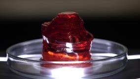 Close-up van rood doorzichtig mineraal Steekproef van rood mineraal op schone glaskop in laboratorium Halfedelsteen of onbehandel stock footage