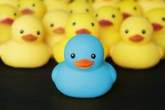 Close-up van rubber duckies royalty-vrije stock afbeeldingen