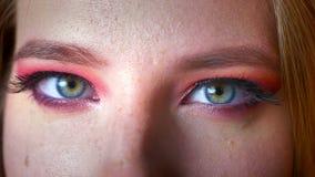 Close-up van schitterende vrouwelijke blauwe oogmake-up met roze schaduwen en gouden eyeline Ogen die recht camera het glimlachen stock videobeelden