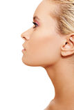 Close-up van schoonheid met schone huid & roze samenstelling Stock Foto's