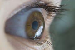 Close-up van schoonheids menselijk oog Stock Foto's